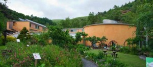 The Catwise Centre
