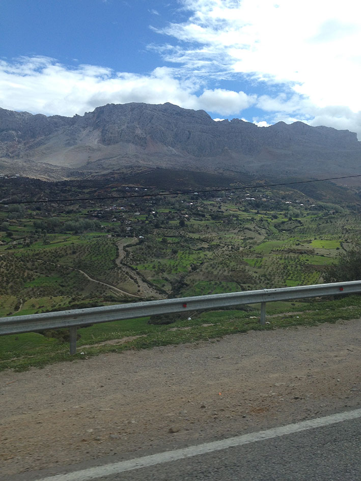 Foothills of the Rif Mountains, the green will soon be 'grass' !!